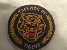 Photo of Taekwondo badge